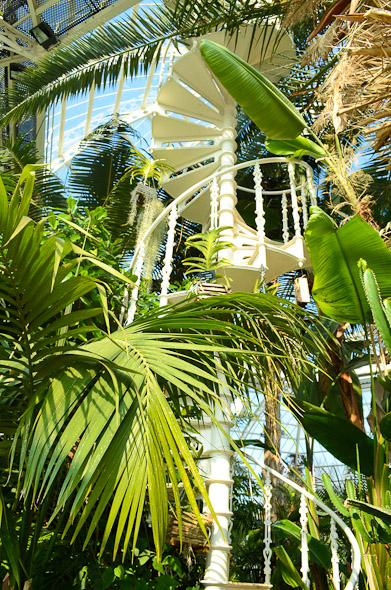 liverpool palm house gantry white wedding photography